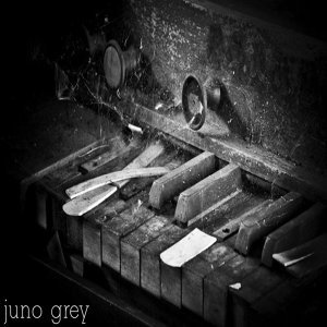 Juno Grey 歌手頭像
