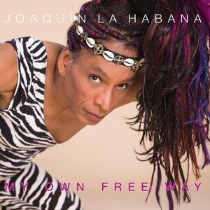 Joaquin La Habana 歌手頭像