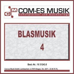 Blasmusik 歌手頭像
