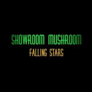 Showroom Mushroom 歌手頭像