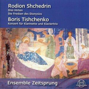 Ensemble Zeitsprung / Markus Elsner 歌手頭像