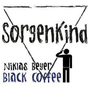 Niklas Beyer 歌手頭像