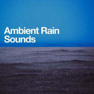 Ambient Rain, Baby Sleep, Calming Sounds 歌手頭像