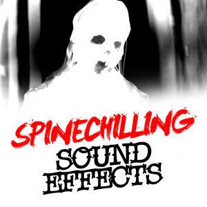 Halloween & Musica de Terror Specialists, Halloween Music Specialist, Musica de Halloween Specialists 歌手頭像