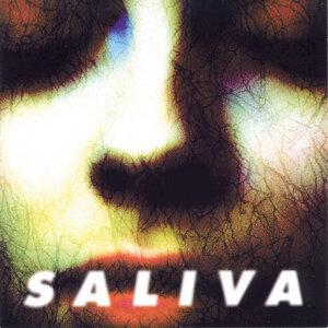 Saliva (唾液合唱團) 歌手頭像