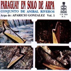 Paraguay en solo de Arpa 歌手頭像