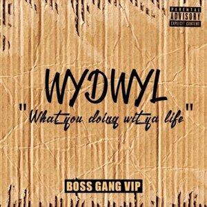 Boss Gang VIP 歌手頭像