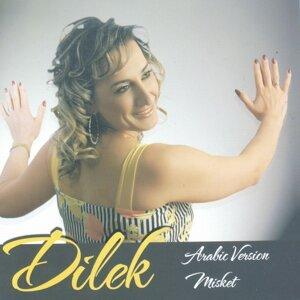 Dilek 歌手頭像