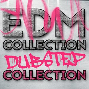 Dub Step, Dubstep Anthems, Dubstep Kings 歌手頭像