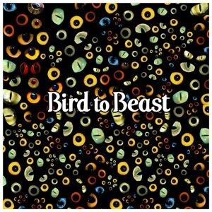 Bird To Beast 歌手頭像