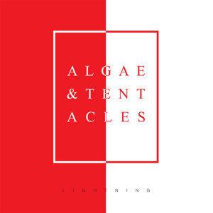 Algae & Tentacles 歌手頭像