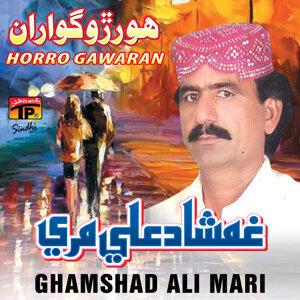 Ghamshad Ali Mari 歌手頭像