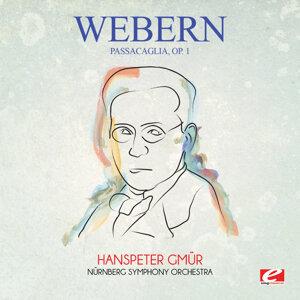 Nürnberg Symphony Orchestra, Hanspeter Gmür 歌手頭像