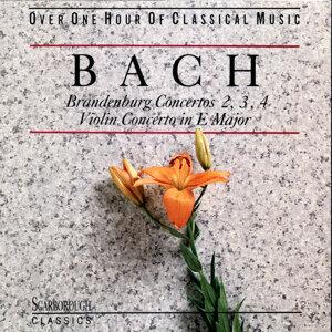 Wurzburg Soloists Orchestra 歌手頭像