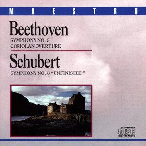 South German Philharmonic & Nuremberg Symphony Orchestra 歌手頭像