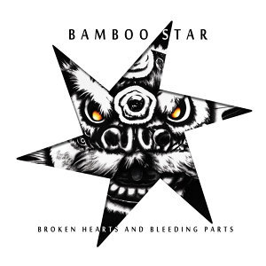 Bamboo Star Artist photo