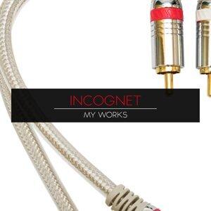 Incognet, DJ Winn, Re-Zone & Zmey 歌手頭像
