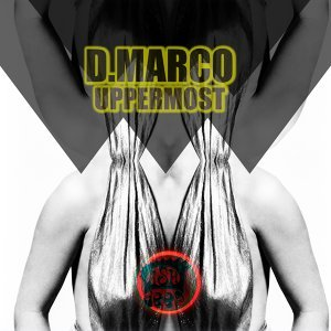 D. Marco 歌手頭像
