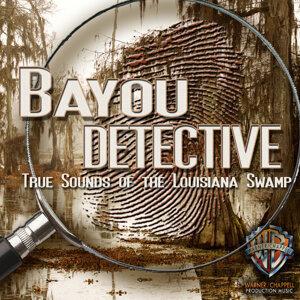 New Bayou Swamp Band 歌手頭像