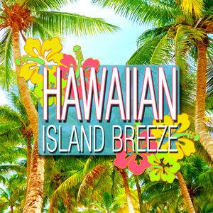 The New Hawaiians 歌手頭像