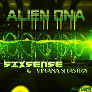 Sixsense & Vimana Shastra 歌手頭像