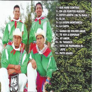 Grupo Huichol Abrazo Musical 歌手頭像