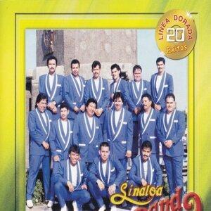 Sinaloa Banda 歌手頭像