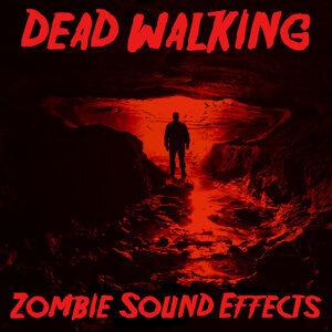 Audio Decor Sound Effects 歌手頭像