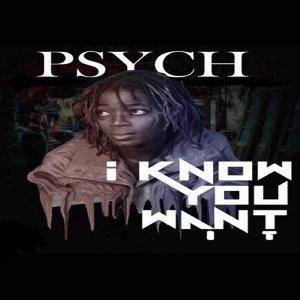 Psych 歌手頭像