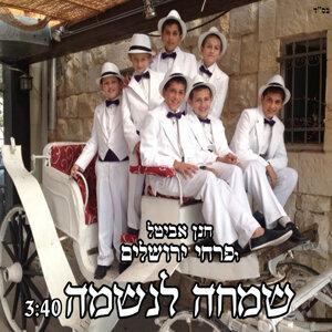 חנן אביטל ופרחי ירושלים 歌手頭像