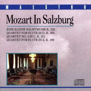 Mozart Quartet Salzburg 歌手頭像