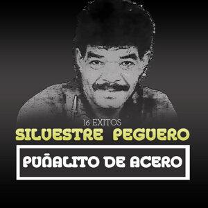 Silvestre Peguero 歌手頭像