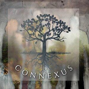 Connexus 歌手頭像
