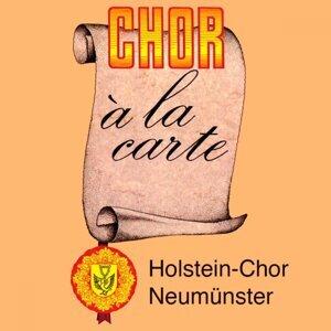 Holstein-Chor Neumünster und Orchester 歌手頭像