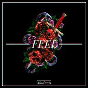 Madness (瘋狂一族合唱團)
