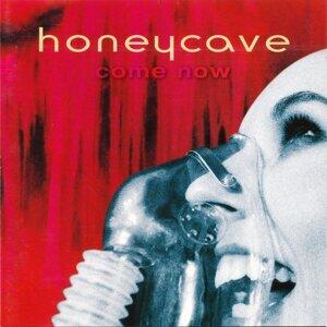 Honeycave 歌手頭像
