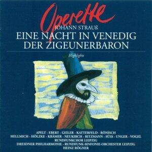 Heinz Rögner 歌手頭像