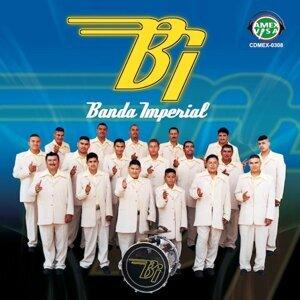 Banda Imperial De Janamuato De Michoacan 歌手頭像