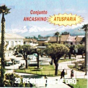 Conjunto Ancashino Atusparia 歌手頭像