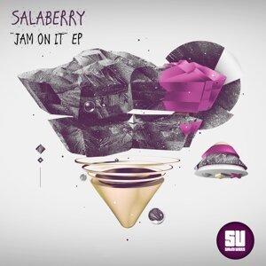 Salaberry 歌手頭像