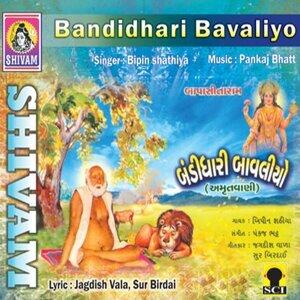 Bipin Shathiya 歌手頭像