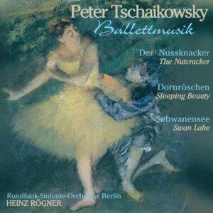 Berlin Radio Symphony Orchestra & Heinz Rögner 歌手頭像