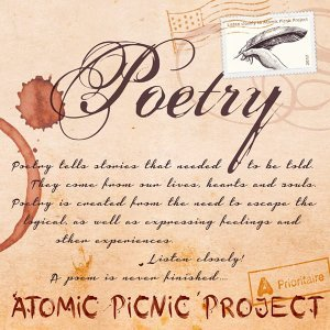 Atomic Picnic Project 歌手頭像