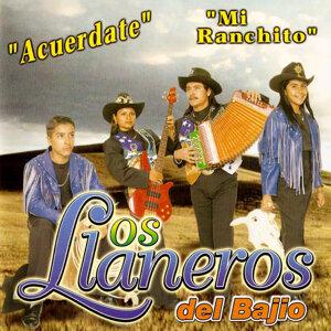 Los Llaneros Del Bajío 歌手頭像