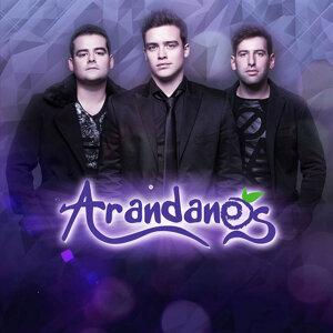 Arandanos 歌手頭像