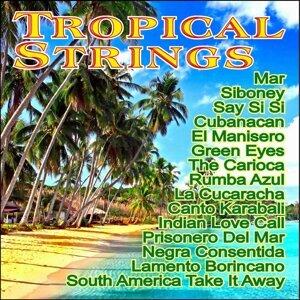 Los Violines Tropicales 歌手頭像