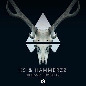 KS, HammerZz 歌手頭像