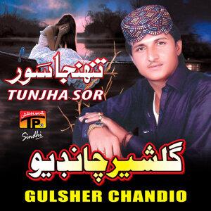 Gulsher Chandio 歌手頭像