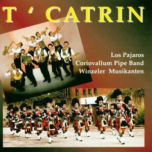 T'Catrin 歌手頭像