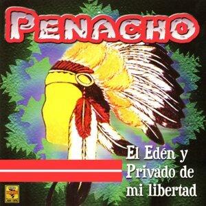 Penacho 歌手頭像